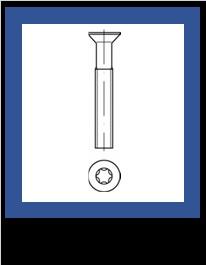 Nerez A2 Torx